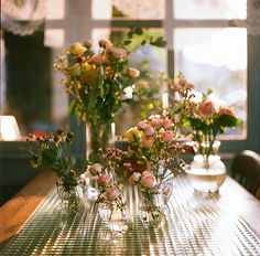 Summer roses | when the light was shining through the window… | Flickr