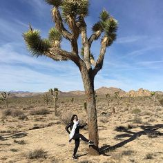Tiane, an instructor at The Bar Method Tysons Corner, gets her leg lifts in at Joshua Tree National Park. #WhereDoYouBar?
