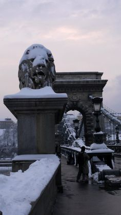 The Chain Bridge and lion statue, Budapest, Hungary