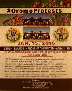 18 Jan 2016 Oromia Insight Efrata Obsa Oromo Protest in NewYork
