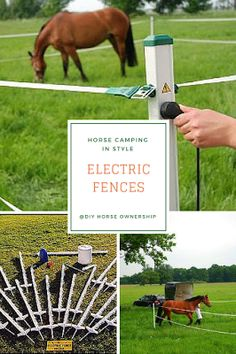Do It Yourself Horse Ownership: How To Go Horse Camping: Where to Keep Your Horse Electric Fencing For Horses, Horse Fencing, Portable Fence, Horse Pens, Travel Trailer Living, Trail Riding Horses, Farm Plans, Mini Pony, Horse Camp