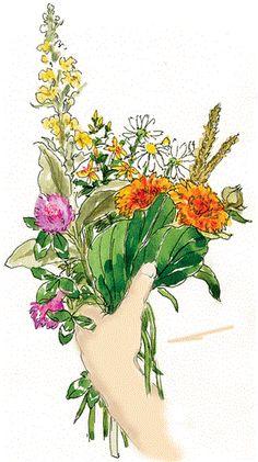 PIENI YRTTIVILJELYN OPAS - Frantsila. 38 mausteyrtin kasvikohtaiset viljely-, maustamis- sekä rohtovinkit. Perusta oma pieni ja helppo maustemaa ! Haaveiletko ikiomasta ryytimaasta, mausteviljelmästä tai rohtokasvitarhasta, mutta et tiedä mistä aloittaa? Voit istuttaa yrttejä viljelypalstallesi, ikkunalaudalle tai kukkapenkkiin... Herbs, Wreaths, Animals, Animales, Door Wreaths, Animaux, Herb, Animal, Deco Mesh Wreaths