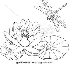 Water Lily and Dragonfly. Water Lily and dragonfly isolated over white. Created: GraphicsFilesIncluded: JPGImage Layered: Yes MinimumAdobeCSVersion: CS Tags: animal Dragonfly Drawing, Dragonfly Art, Silk Painting, Painting & Drawing, Pond Drawing, Pencil Drawings, Art Drawings, Lilies Drawing, Garden Illustration