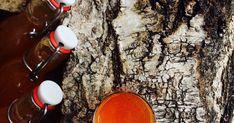 365 věcí které si můžete udělat sami doma. Domácí kosmetika, drogerie a jídla, se kterými ušetříte peníze, přírodu i zdraví. Samos, Cocktail Recipes, Coffee Maker, Homemade, Food, Medicine, Syrup, Alcohol, Coffee Maker Machine