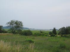 the marsh Ipswich Mass