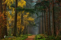 """Press H to dim the lights, it really makes a difference! <a href=""""https://www.facebook.com/LarsvandeGoor"""">FOLLOW ME ON FACEBOOK</a>    <a href=""""http://larsvandegoor.com/finalist-hasselblad-masters-2016/"""">I am in the Hasselblad Masters 2016 top ten final, see more here</a>"""