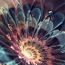 Silvia Cordedda só foi descobrir a arte fractal no início de 2012, mas já exibe grande desenvoltura com esse método de criação digital. Confira aqui a bela série de flores que a italiana exibe no p…