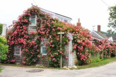 Nantucket Nantucket Style, Nantucket Island, Small Places, Places To Go, New England Cottage, England Beaches, My Happy Place, Rhode Island, Cape Cod