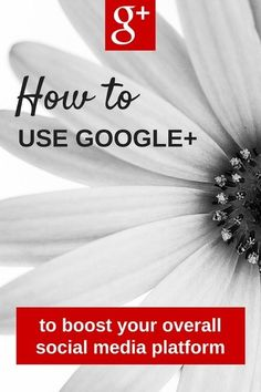 How to Increase Your Social Media Presence using Google Plus