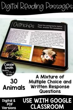 Digital Reading Passages - Thrifty in Third Grade Reading Passages, Reading Activities, Teaching Reading, Reading Comprehension, Comprehension Strategies, Guided Reading, Free Reading, Learning, Online Classroom