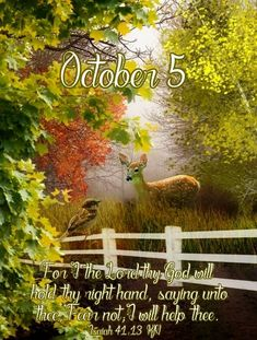 Facebook Image, Facebook Sign Up, October Calender, King James Bible Verses, Days Of The Year, 1 Year, Tumblr Image, October 5, Scripture Quotes