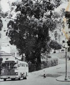 1959 Aclimação