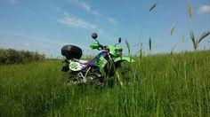 Natura e moto