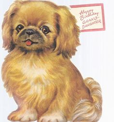 A birthday Peke Animals Images, Animals And Pets, Cute Animals, Pekingese Puppies, Dogs And Puppies, Doggies, Fu Dog, Dog Cat, Vintage Birthday Cards
