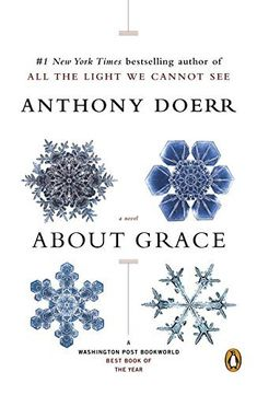 About Grace: A Novel by Anthony Doerr, http://www.amazon.com/dp/0143036165/ref=cm_sw_r_pi_dp_WBdIvb1TN24S3