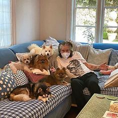 Ozzy Osbourne Family, Ozzy And Sharon Osbourne, Daughter, Dogs, Animals, Mail Online, Daily Mail, Public, Hero