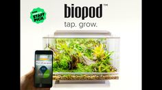 Grow anything from a herb garden to a rainforest! Controls temperature, light, humidity, ventilation and rainfall. Automatically!