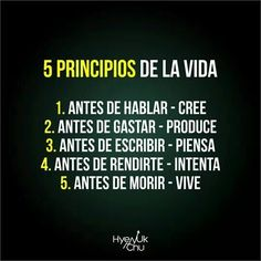 #5principiosdelavida