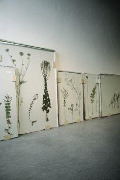 Bloemen gedroogd uit de boekenpers. Mooi en weer helemaal van nu - via Bloom Magazine