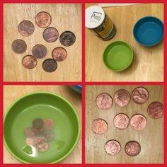 Science Fun! Cleaning a Penny | Macaroni Kid