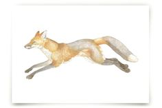 Swift Fox Art Prints by Natalie Groves at minted.com