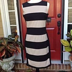 Ellen Tracy Dress HP 1/14/15 by roxyjane Classic fitted sheath with black and tan stripes and black details down the sides . Thick stretchy fabric . New with tags. 37 inches long. Ellen Tracy Dresses