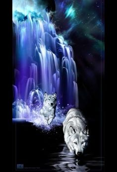 Wolf couple in purple blue moon waterfall river - fantasy art. Anime Wolf, Wolf Photos, Wolf Pictures, Wolf Love, Fantasy Kunst, Fantasy Art, Beautiful Creatures, Animals Beautiful, Tier Wolf