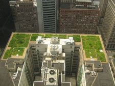 A new study from researchers in Greece offers recommendations for the use of turfgrass in green roof environments. (http://www.livingarchitecturemonitor.com/index.php/news/allnews/259-new-study-tests-turfgrass-in-shallow-green-roof-substrates) | #green #roof #rooftop #substrate #garden #plants #grass #turf #turfgrass #greenroof #vegetation