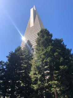 William Saroyan, San Francisco California, Bay Area, Places Ive Been, Skyscraper, Multi Story Building, Usa, City, Travel