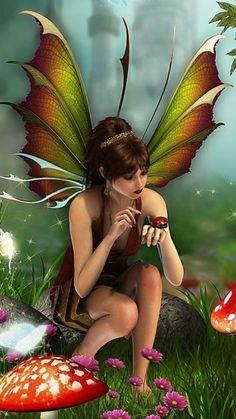Fée élémentaire et coccinelle  / Elemental Fairy and Ladybug