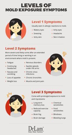 Fundamentals Of Mold Exposure Symptoms And Adrenal Fatigue Syndrome