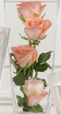 https://www.phpbb.com/community/memberlist.php?mode=viewprofile&u=1576436  Explore This Site Cheap Flowers For Centerpieces,  You in truth desire to try it out dainty and it will take you farther.