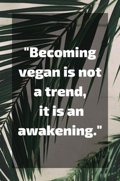 71 Amazing Vegan Quotes You'll Wish You Said This list of vegan quotes is inspirational, positive, powerful, and cute. You'll love the motivation they give to live a vegan lifestyle. Quotes Vegan, Vegetarian Quotes, Vegan Memes, Vegan Mug Cake, Chili Vegan, Tacos Vegan, Vegan Art, Vegan Food, How To Become Vegan