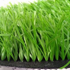 Other reasons why consumers prefer plastic grass in Abu Dhabi include ease of maintenance and its visual appeal. The texture and appearance of this artificial grass are attractive and have the ability to enhance the entire look of your lawn. Email : info@greengrass.ae Phone No : +971554722980 Address : Sheikh Zayed Road Al Qouz First Behind BMW/AGMC 4th Street Showroom No 33 #homedesign #artificialgrass #grasabudhabi #plasticgrass #fakegrass #bestgrass #moderndesign #interiordesign #homedecor Plastic Grass, Plastic Mat, Artificial Grass Carpet, Artificial Turf, Fake Grass, Green Grass, Natural Looks, Abu Dhabi, Lawn