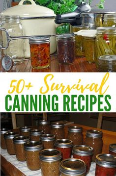 50 Survival Canning Recipes — Canning is probably my most favorite way of preserving food. I love saving money and this is a great way to do just that! Get a great selection of over 50 canning recipes that can be very valuable in any emergency situation Emergency Food, Survival Food, Survival Prepping, Homestead Survival, Survival Skills, Emergency Preparedness, Teacher Survival, Emergency Supplies, Survival Shelter
