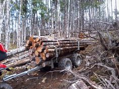Woodland ATV Trailer – Woodland Mills Canada