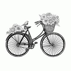 Bicycle                                                                                                                                                                                 More