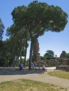 "Palatine Hill near the Forum/Colosseum. My favorite ""quiet"" place in Rome. Very few tourists!"