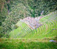 Winay Wayna meaning Forever Young! Incan ruins off the path on Day 3 of the Inca Trail trek! by byocompass