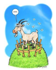 Comic-Illustration: Ziege als Meckerliese | Reimix