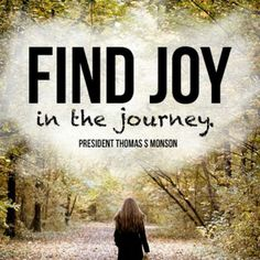 Find Joy- monson