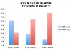 should abortions be legal argumentative essay