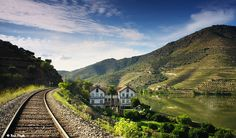 Douro river Valley by Rui Pires Photography