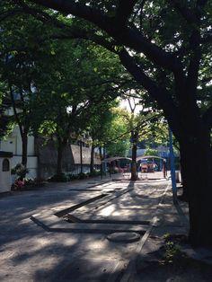 若葉公園 / スタジオ向かい 徒歩30秒