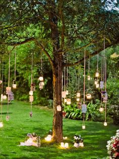 36 Party Alcove Party Lights Tips for Ourdoor Decor is part of Summer outdoor party decorations - Table Decoration Wedding, Summer Party Decorations, Garden Decoration Party, Table Wedding, Shabby Chic Wedding Decor, Wedding Ceremony, Tree Decorations Wedding, Shabby Chic Outdoor Decor, 21st Decorations