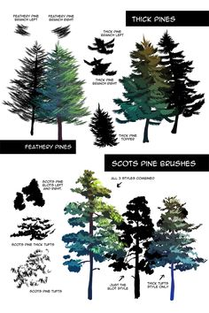 Pine Foliage Brushes for Clip Studio/Manga Studio 5 This set includes 9 different pine tree foliage Digital Art Tutorial, Digital Painting Tutorials, Art Tutorials, Concept Art Tutorial, Arte Sketchbook, Environment Concept Art, Painting Techniques, Landscape Art, Pixel Art