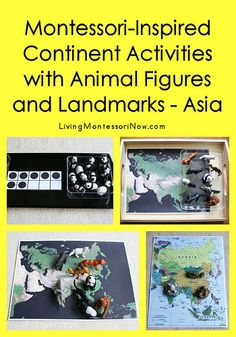 Montessori-Inspired Continent Activities with Animal Figures and Landmarks – Asia (Post includes the Montessori Monday link-up collection)