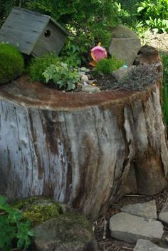 and if the gnome house doesn't work we can try this.  Garden Inspiration: DIY Fairy Gardens