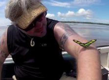 VIDEO: Amazon River Cruise HighlightsGreen Global Travel