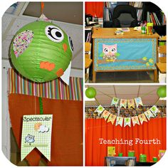 Even upper elementary rooms can be pretty!  Owl Themed Classroom.